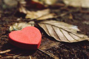 L'image d'un coeur qui symbolise la gratitude