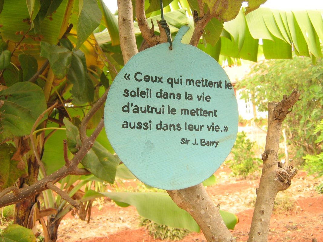Citations suspendus à des arbres