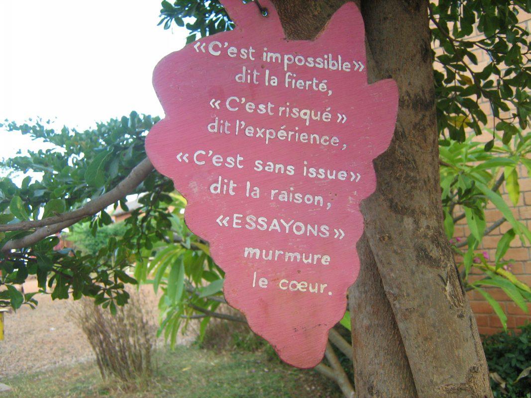 citations suspendus à des branches